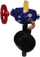 HPG Grooved Butterfly Valve 300PSI   FIVALCO