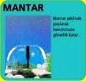 MANTAR FİSKİYE